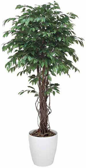 アートグリーン 人工観葉植物 光触媒 光の楽園 ベンジャミンリアナ1.8(代引き不可)【送料無料】【ポイント10倍】
