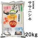 米 日本米 令和元年度産 宮城県産 ササニシキ 20kg ご注文をいただいてから精米します。【精米無料】【特別栽培米】【ささにしき】【新米】(代引き不可)