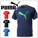 (プーマ)PUMA グラフィック SS TEE 513362 Tシャツ 半袖 スポーツ スポーツTシャツ  カジュアル 部屋着【あす楽対応】【ポイント10倍】