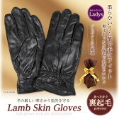 ラム革手袋 レディース Mサイズ TB-014-BK ブラック【楽ギフ_包装】