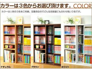 シングルスライド書棚(奥深タイプ)(低ホルムアルデヒド☆☆☆等級)