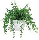 アートグリーン 人工観葉植物 グリーンネックレス(代引き不可)
