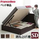 【送料無料】フランスベッド セミダブル ベッド下収納