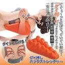 シェモア 「グイ押し」バックストレッチャー 809584 雑貨 雑貨品(代引不可)