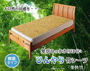 天然のひんやり竹シーツ『楽快竹』ナチュラル82×150cm(軽量タイプ)(代引不可)【送料無料】