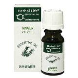 生活的树Herbal Life 姜10ml【RCP】[生活の木 Herbal Life ジンジャー 10ml【RCP】]