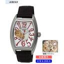 【AUREOLE】オレオール メンズ腕時計 SW-580M-3 アナログ表示 自動巻 スケルトン 日常生活用防水 /1点入り(代引き不可)【送料無料】