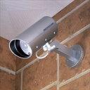 スマイルキッズ 防雨ダミーカメラ ADC-205 【旭電機化成・スマイルキッズ】(代引き不可)【送料無料】