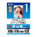サンワサプライ インクジェット写真印画紙・特厚 JP-EP2NA4(代引不可)