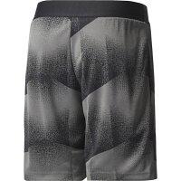 adidas(アディダス) KIDS YB トレーニングショーツ DTL09 【カラー】グレーファイブ×ブラック×ホワイト 【サイズ】J160の画像