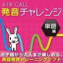 ATR CALL ȯ�������� ñ���� ������?���ǡ� ������ҥ�ǥ����ʥ�