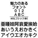 AR丸ゴシック体E (Windows版 TrueTypeフォントJIS2004字形対応版) / 販売元:株式会社シーアンドジイ