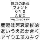 AR丸ゴシック体3DM Windows版TrueTypeフォント
