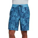 DSG メンズ 上下セット 水着 DSG Men's Jude Modern Printed Board Shorts Stamp Collector