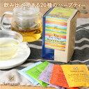 ゾネントア 20種類のお茶アソート【SONNENTOR ハーブティー お茶 有機原料 紅茶 緑茶】※返品・交換不可