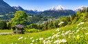 絵画風 壁紙ポスター (はがせるシール式) アルプス山脈 ヴァッツマンとカモミール ベルヒテスガーデン国立公園 ドイツ パノラマ キャラクロ ALPS-004S1 (1152mm×576mm) 建築用壁紙+耐候性塗料 インテリア