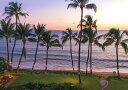 絵画風 壁紙ポスター (はがせるシール式) ハワイ マウイ島の夕日 サンセット ビーチパーク パームツリー ヤシの木 キャラクロ HWI-019A1 (A1版 830mm×585mm) 建築用壁紙+耐候性塗料 インテリア