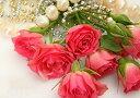 絵画風 壁紙ポスター (はがせるシール式) バラとネックレス 真珠 ピンクパンサー 薔薇 花 キャラクロ FROS-006A1 (A1版 830mm×585mm..
