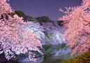 絵画風 壁紙ポスター (はがせるシール式) 夜桜 さくら 千鳥ヶ淵 八重桜 シダレザクラ サクラ 開