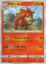 玩具, 興趣, 遊戲 - ポケモンカードゲーム SM4S 008/050 バクーダ(アンコモン)【新品】