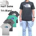 ノースフェイス THE NORTH FACE Tシャツ メンズ HALF DOME TRI-BLEND TEE ロゴ S M L XL 19新色追加