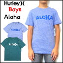 ハーレー Tシャツ ボーイズ ジュニア