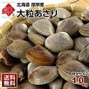 【特大サイズ】厚岸産 ごろっと特大殻付大粒あさり 1kgハマ...