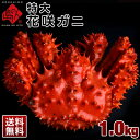 ≪真っ赤に輝く幻の蟹≫超特大 花咲蟹 花咲ガニ 1.0kg ...