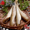 氷下魚(こまい) 20g〜40g×5尾 北海道 お土産 お取り寄せ ギフト コマイ