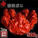 ≪真っ赤に輝く幻の蟹≫北海道根室産 花咲蟹 花咲ガニ 500...