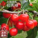 【2020年販売分】北海道産 さくらんぼ 紅秀峰 1.0kg...