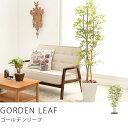 観葉植物 光触媒 人工植物 グリーン 光触媒観葉植物 ゴールデンリーフ(Mサイズ)送料無料(送料込)