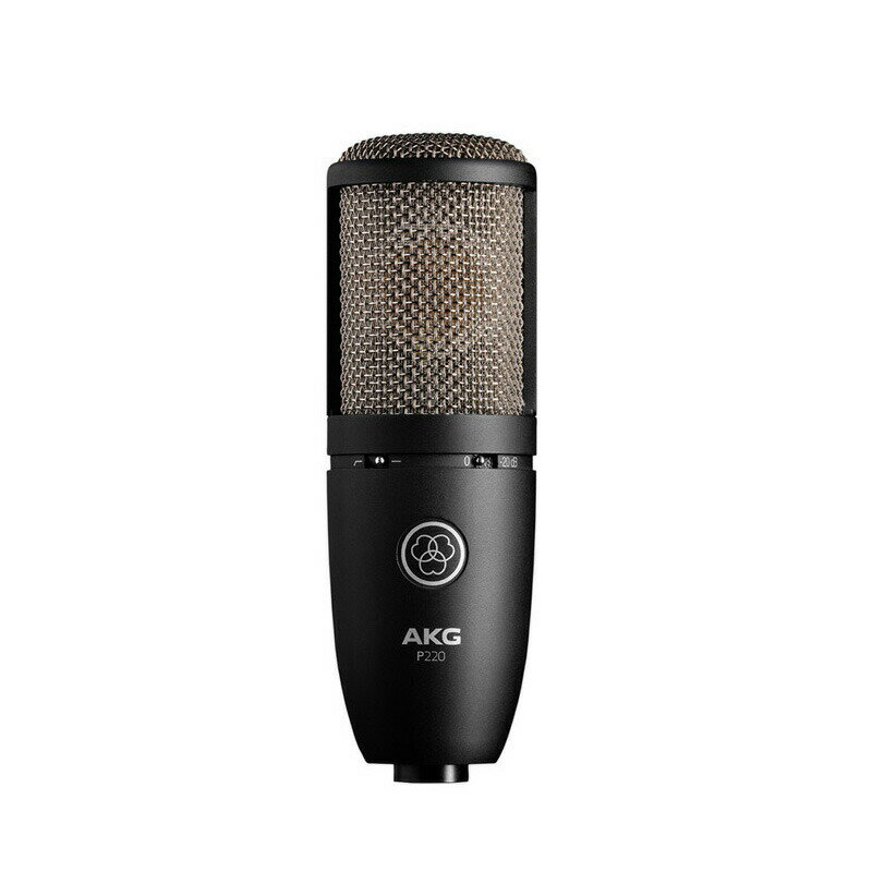 AKG P220 【国内正規品2ヶ年保証】