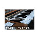 Acoustic Samples AS ElectricKey Collection(オンライン納品専用) ※代金引換、後払いはご利用頂けません。