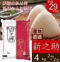 【産地直送】新潟県産 新之助 4kg (2kg×2袋) 平成29年度産 新潟米 新ブランド米 コシヒカリ 米