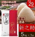 【産地直送】新潟県産 新之助 5kg 平成29年度産 新潟米 新ブランド米 コシヒカリ 米