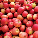 ちょっとスパイシーなリンゴの香り。スパイスドアップル -Spiced Apple-10mlハイグレード アロマクラフト用 フレグランスオイル(手作り石鹸 香水 キャンドル バスボム サシェ / ディフューザー 加湿器 ネブライザー用)