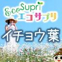 【エコサプリ】イチョウ葉 (約60日分)