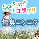 【エコサプリ】無臭ニンニク (約60日分)