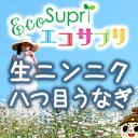 【エコサプリ】生ニンニク・八つ目うなぎ (約60日分)