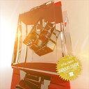 藝人名: N - 【メール便送料無料!】「FLASH CUBE」フラッシュ キューブ/nouvo nude/KONAMI コナミ/ゲーム/beatmania ビートマニア/楽曲/提供/Super Highway/復活/Remix リミックス/ダンス/クラブ/DJ/2枚組