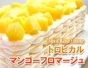 【季節限定】ミルクレープ×夏色マンゴーフロマージュブランに山盛りマンゴーを合わせました♪トロピカルマンゴーフロマージュ*Tropical Mango Fromage*