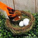 バードネスト(M) たまご付き ※鳥別売り※【デコレーション資材 アレンジメント オブジェ ディスプレイ 鳥の巣】