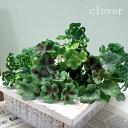 【造花】 クローバーピック 1本 【白詰草 フェイクグリーン 幸運 しあわせ 人工植物 インテリア グリーン ナチュラル 春の花】【あす楽】