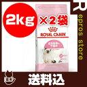 【送料込2個セット】FHN キトン 2kg ロイヤルカナン▼g ペット フード キャット 猫 子猫 フィーラインヘルスニュートリション