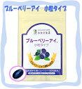 即納 わかさ生活ブルーベリーアイ 小粒タイプ 1袋(62粒入り) <サプリメント・ナノビルベリー>