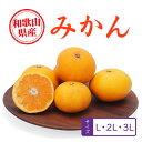 みかん 和歌山県産 10kg 秀・優・並ランク L〜4Lサイズ
