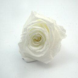 暗闇で光るバラ 1輪【プリザーブドフラワー】 【光る花】