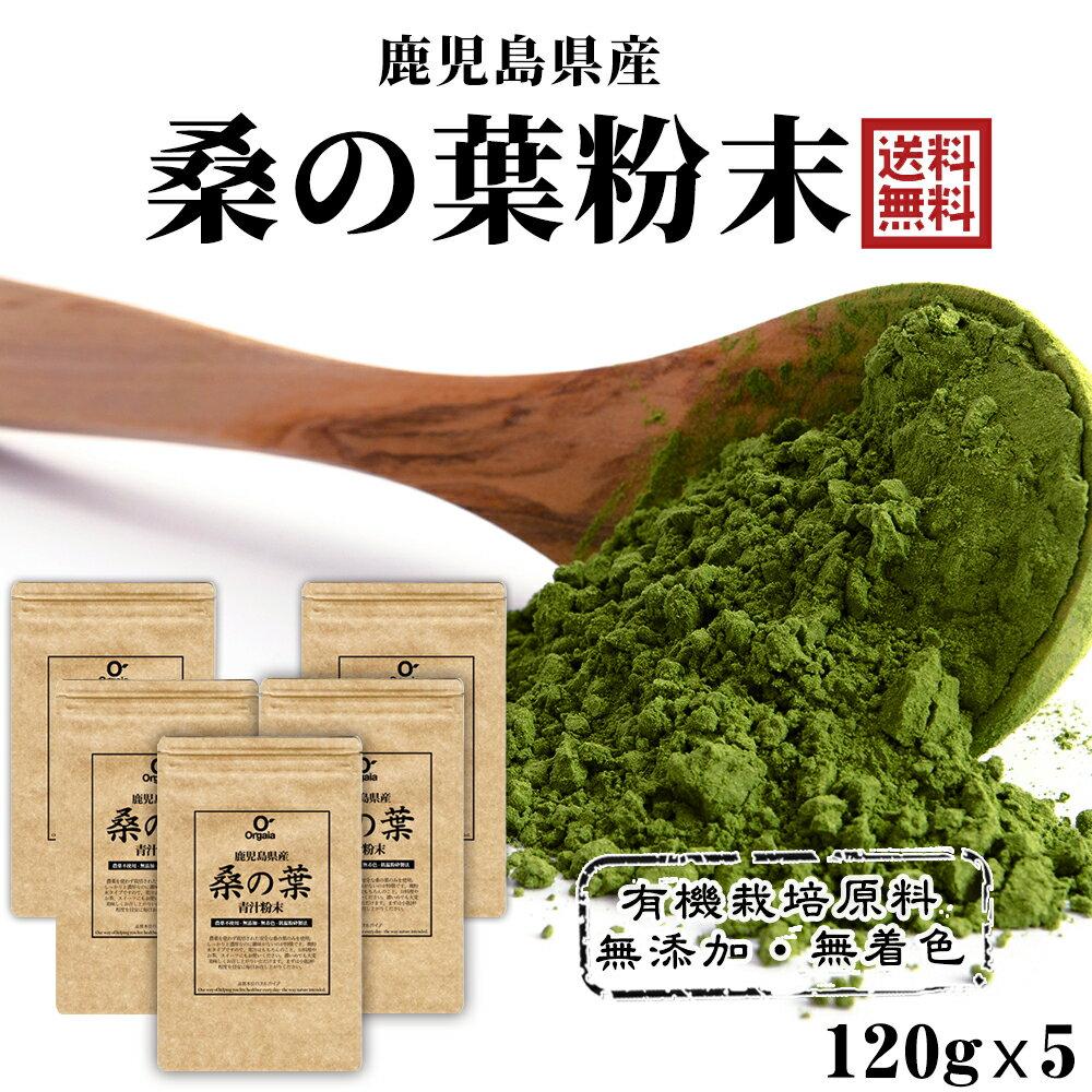 国産桑の葉パウダー600g約5ヵ月分<鹿児島県産桑茶青汁>桑の葉100%の本格青汁粉末無添加、無着色