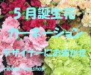 5月の誕生花を使ったバースデーフラワー★只今、ご予約受付中♪【5月限定&送料無料】誕生日に贈る花束♪カーネーションと季節のお花の豪華花束色が選べます♪FL-5GT-5【楽ギフ_包装】【楽ギフ_メッセ入力】